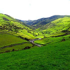 FloresPlaats: AçoresFoto: Floreesha - Turismo dos Açores