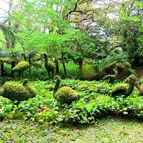 Parque Terra NostraФотография: Floreesha - Turismo dos Açores