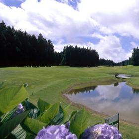 Furnas Golf Course