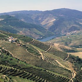 By car through the Upper Douro Wine Region