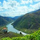 Experience Portugal Travel &#10Lieu: Venda do Pinheiro&#10Photo: Experience Portugal Travel
