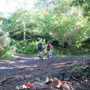 Happy Bikes&#10Luogo: Funchal&#10Photo: Happy Bikes