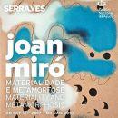 Joan Miró, Materialidade e Metamorfose