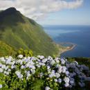 Fajã da Caldeira de Santo Cristo&#10場所: Ilha de São Jorge nos Açores&#10写真: Rui Vieira