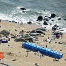 Praia de Salgueiros