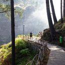 QPMadeira&#10Place: Funchal&#10Photo: QPMadeira