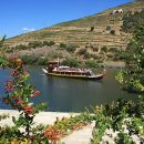 Tomaz do Douro&#10Luogo: Porto&#10Photo: Tomaz do Douro