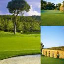 Xpress Portugal&#10Lugar Caldas da Rainha&#10Foto: Xpress Portugal