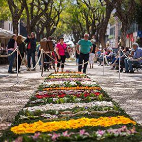 Праздник цветов – Мадейра